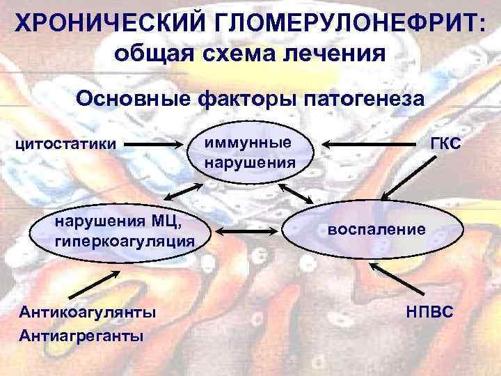 ХРОНИЧЕСКИЙ ГЛОМЕРУЛОНЕФРИТ: общая схема лечения Основные факторы патогенеза цитостатики нарушения МЦ, гиперкоагуляция Антикоагулянты Антиагреганты