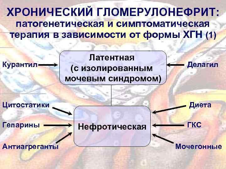 ХРОНИЧЕСКИЙ ГЛОМЕРУЛОНЕФРИТ: патогенетическая и симптоматическая терапия в зависимости от формы ХГН (1) Курантил Латентная