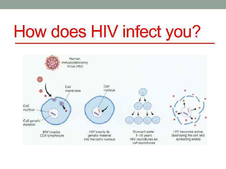 How does HIV infect you?