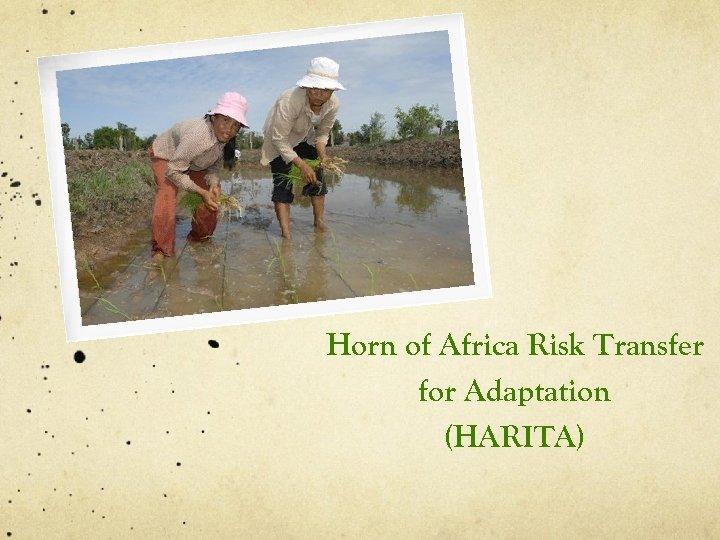 Horn of Africa Risk Transfer for Adaptation (HARITA)