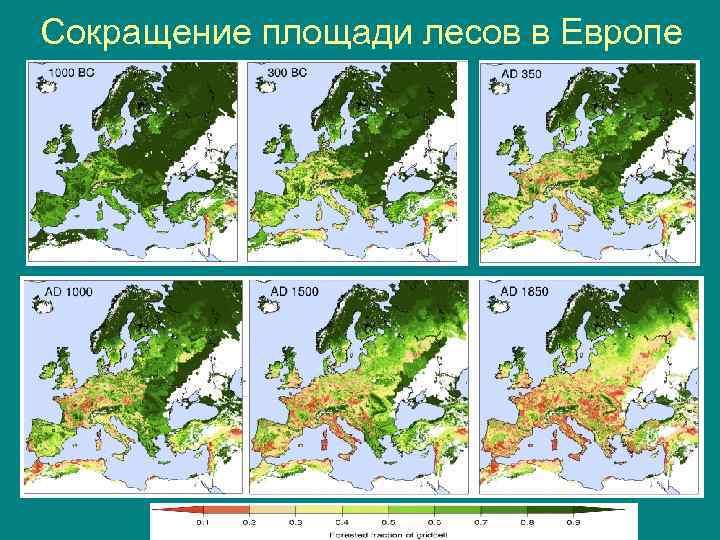 Сокращение площади лесов в Европе