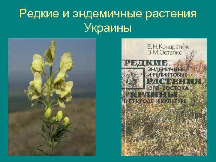 Редкие и эндемичные растения Украины