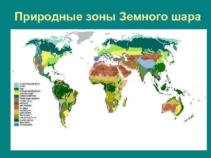 Природные зоны Земного шара