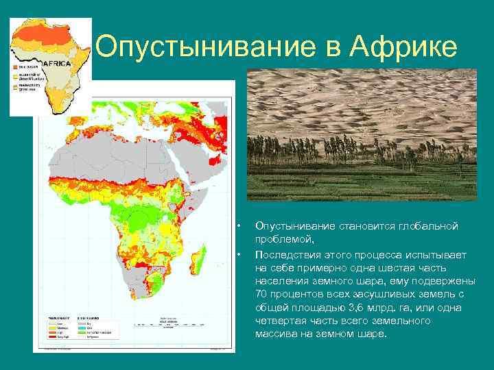 Опустынивание в Африке • • Опустынивание становится глобальной проблемой, Последствия этого процесса испытывает на