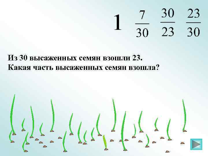 Из 30 высаженных семян взошли 23. Какая часть высаженных семян взошла?