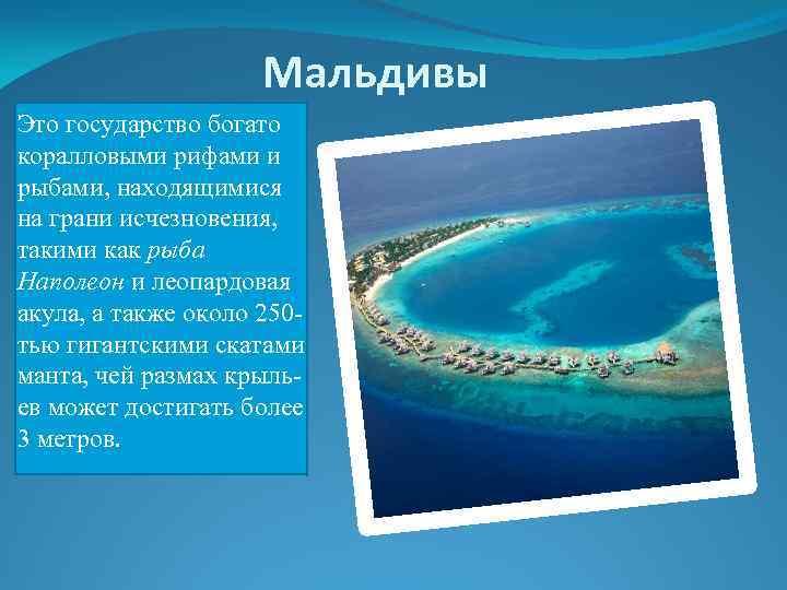 Мальдивы Это государство богато коралловыми рифами и рыбами, находящимися на грани исчезновения, такими как