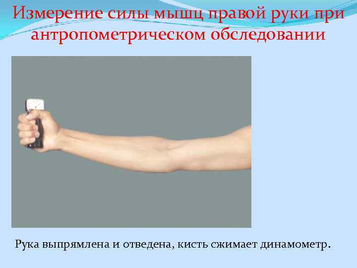 Измерение силы мышц правой руки при антропометрическом обследовании Рука выпрямлена и отведена, кисть сжимает