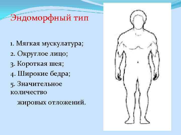 Эндоморфный тип 1. Мягкая мускулатура; 2. Округлое лицо; 3. Короткая шея; 4. Широкие бедра;