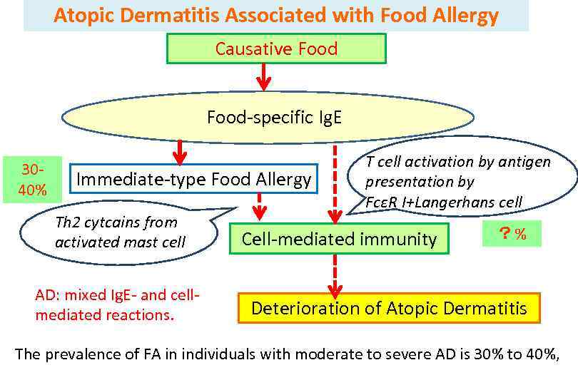 Atopic Dermatitis Associated with Food Allergy Causative Food-specific Ig. E 3040% Immediate-type Food Allergy