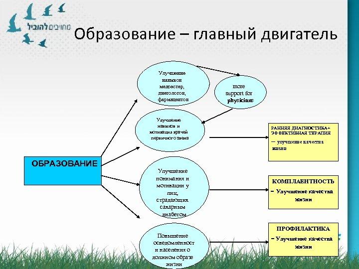 Образование – главный двигатель Улучшение навыков медсестер, диетологов, фармацевтов Улучшение навыков и мотивация врачей