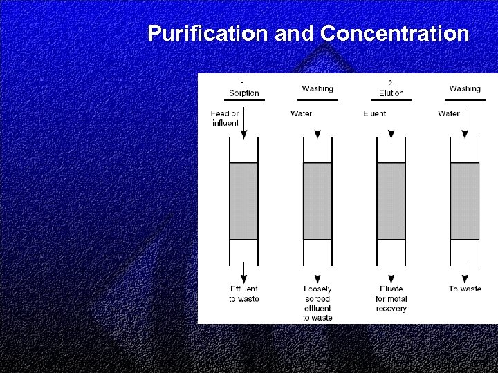 Purification and Concentration