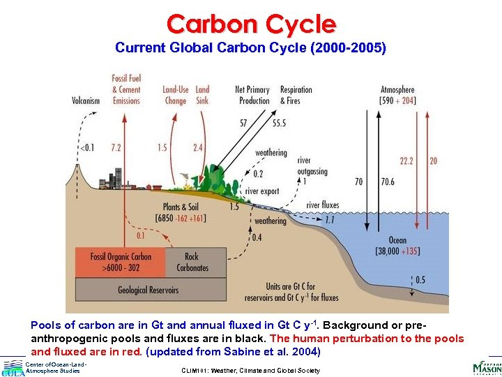 Carbon Cycle Current Global Carbon Cycle (2000 -2005) Pools of carbon are in Gt