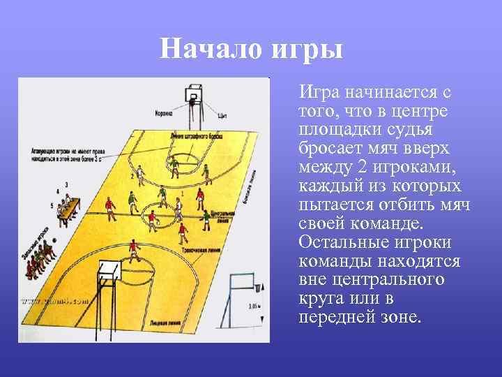 Начало игры Игра начинается с того, что в центре площадки судья бросает мяч вверх
