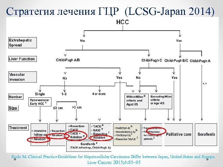 Cтратегия лечения ГЦР (LCSG-Japan 2014) Kudo M. Clinical Practice Guidelines for Hepatocellular Carcinoma Differ
