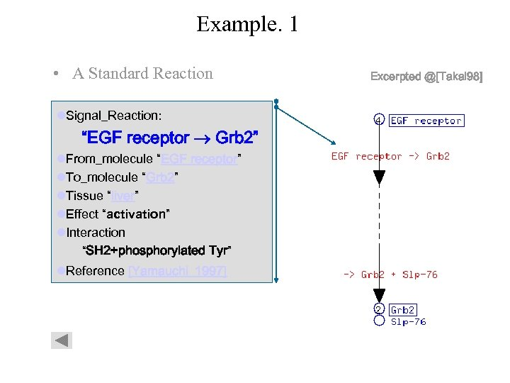 """Example. 1 • A Standard Reaction l. Signal_Reaction: """"EGF receptor Grb 2"""" l. From_molecule"""
