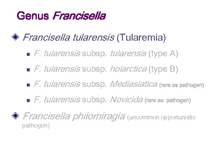 Genus Francisella tularensis (Tularemia) n F. tularensis subsp. tularensis (type A) n F. tularensis