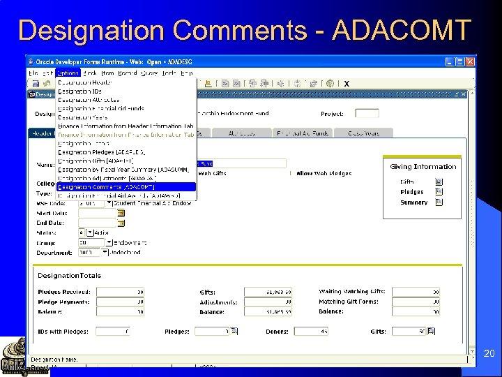 Designation Comments - ADACOMT 20