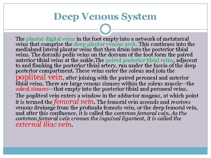 Deep Venous System The plantar digital veins in the foot empty into a network