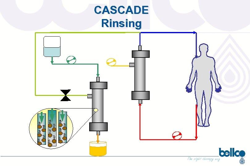 CASCADE Rinsing LIQUIDO DI LAVAGGIO PLASMAFILTRO