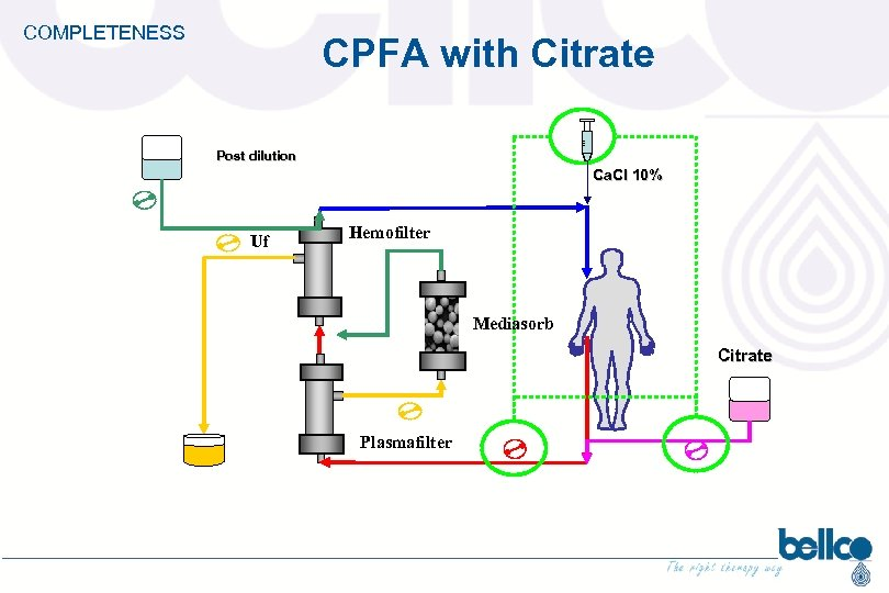 COMPLETENESS CPFA with Citrate Post dilution Ca. Cl 10% Uf Hemofilter Mediasorb Citrate Plasmafilter