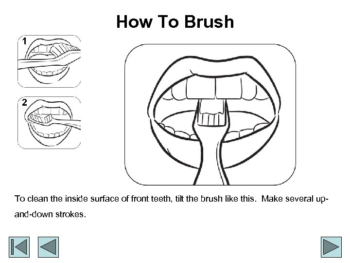 How To Brush 1 2 To clean the inside surface of front teeth, tilt