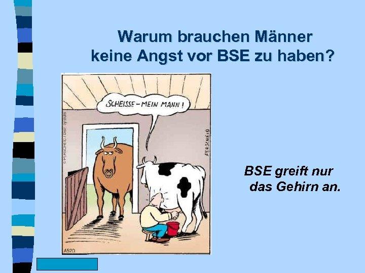 Warum brauchen Männer keine Angst vor BSE zu haben? BSE greift nur das Gehirn