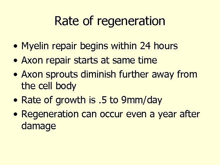 Rate of regeneration • Myelin repair begins within 24 hours • Axon repair starts