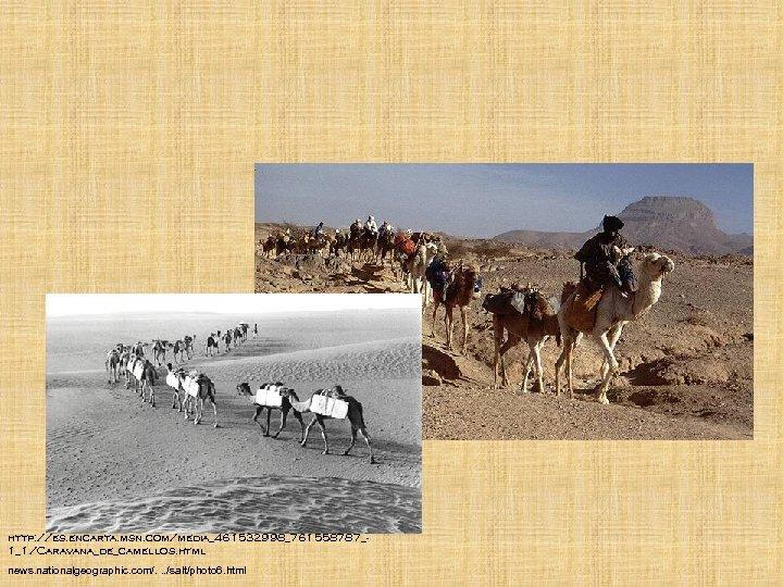 http: //es. encarta. msn. com/media_461532998_761558787_1_1/Caravana_de_camellos. html news. nationalgeographic. com/. . . /salt/photo 6. html