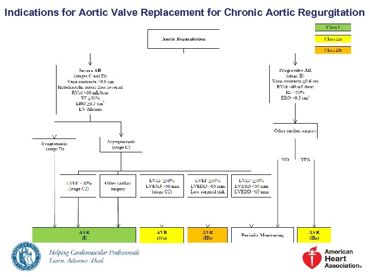 Indications for Aortic Valve Replacement for Chronic Aortic Regurgitation