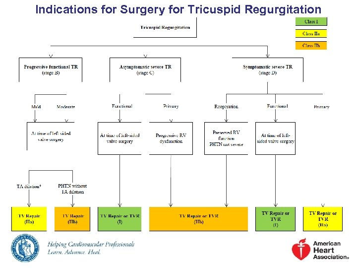 Indications for Surgery for Tricuspid Regurgitation