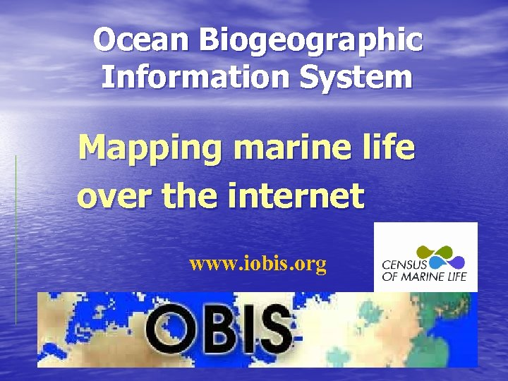 Ocean Biogeographic Information System Mapping marine life over the internet www. iobis. org