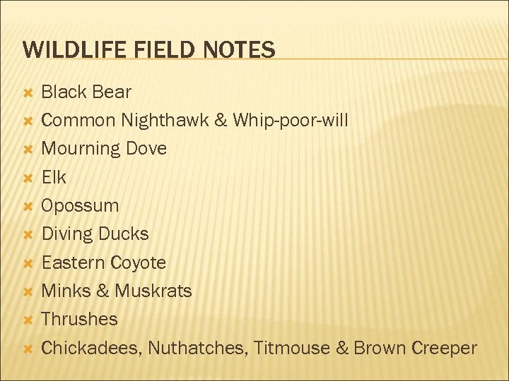 WILDLIFE FIELD NOTES Black Bear Common Nighthawk & Whip-poor-will Mourning Dove Elk Opossum Diving