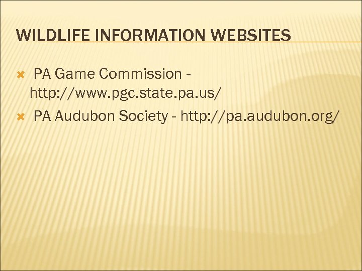 WILDLIFE INFORMATION WEBSITES PA Game Commission http: //www. pgc. state. pa. us/ PA Audubon