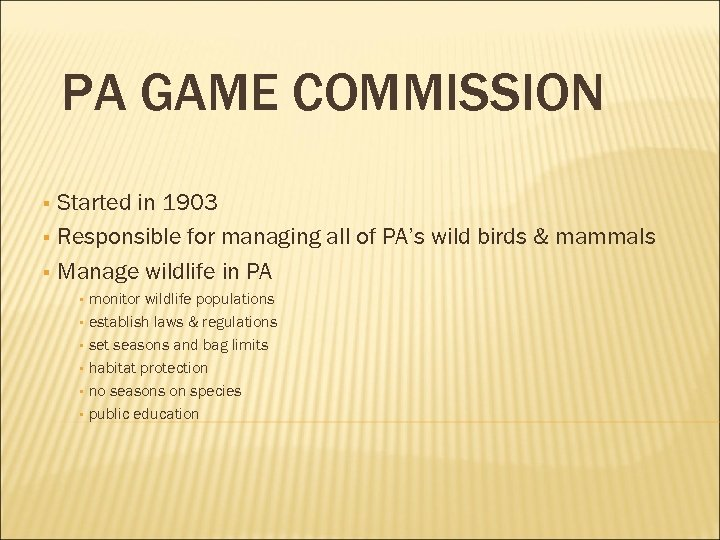 PA GAME COMMISSION Started in 1903 § Responsible for managing all of PA's wild