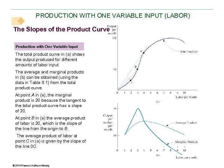 PRODUCTION WITH ONE VARIABLE INPUT (LABOR) The Slopes of the Product Curve Production with
