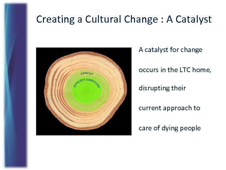 Creating a Cultural Change : A Catalyst A catalyst for change occurs in the