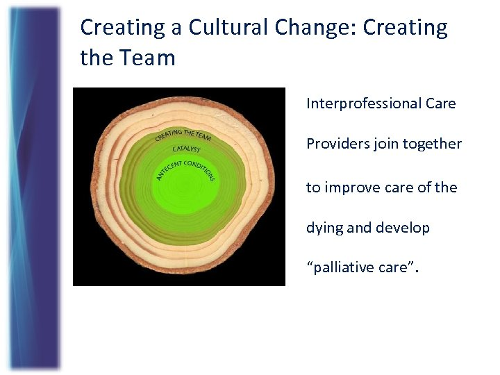 Creating a Cultural Change: Creating the Team Interprofessional Care Providers join together to improve