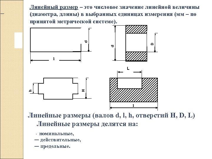 d D d Линейный размер – это числовое значение линейной величины (диаметра, длины)