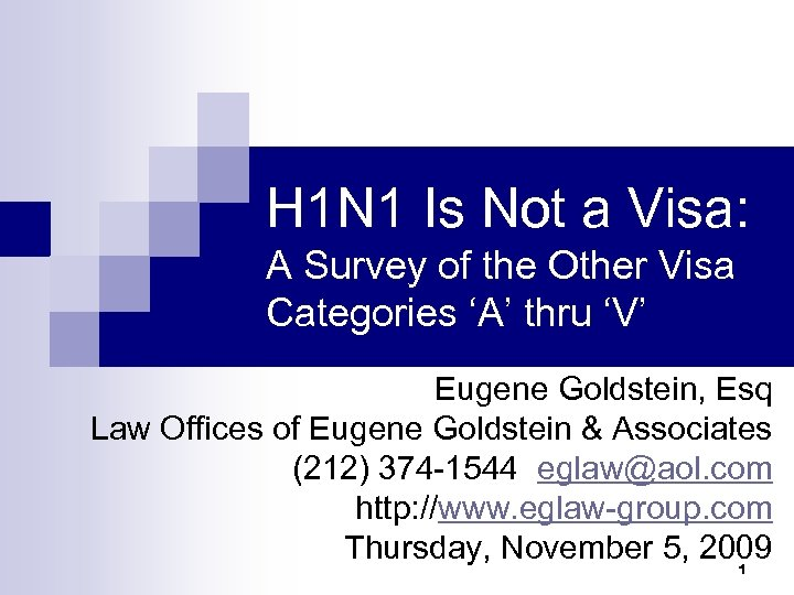H 1 N 1 Is Not a Visa: A Survey of the Other Visa