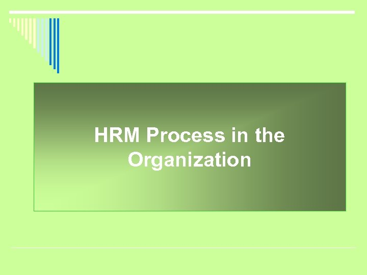 HRM Process in the Organization