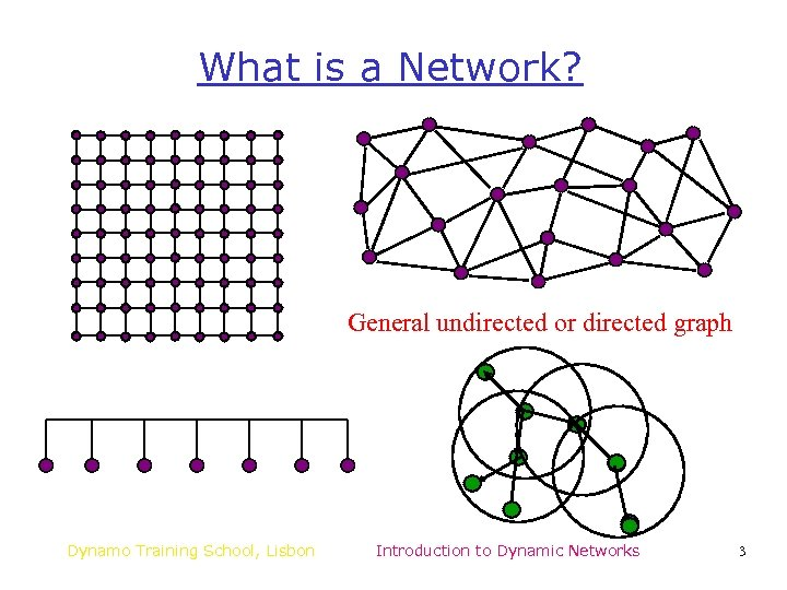 What is a Network? General undirected or directed graph Dynamo Training School, Lisbon Introduction
