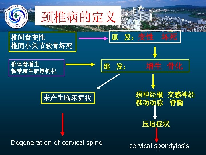 颈椎病的定义 椎间盘变性 椎间小关节软骨坏死 椎体骨增生 韧带增生肥厚钙化 未产生临床症状 原 发:变性 继 发: 坏死 增生 骨化 颈神经根