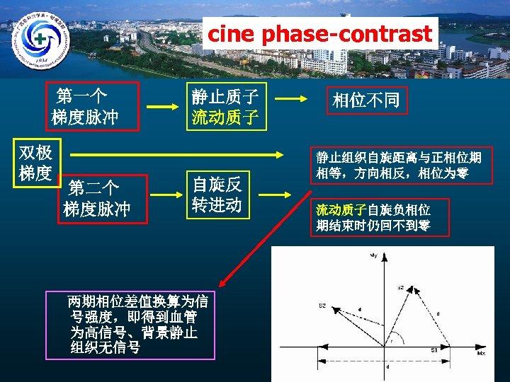 cine phase-contrast 第一个 梯度脉冲 双极 梯度 第二个 梯度脉冲 静止质子 流动质子 自旋反 转进动 两期相位差值换算为信 号强度,即得到血管