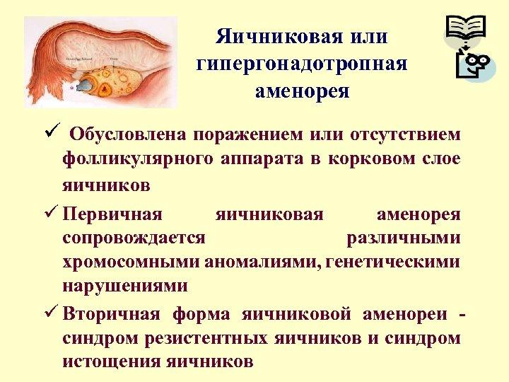 Яичниковая или гипергонадотропная аменорея ü Обусловлена поражением или отсутствием фолликулярного аппарата в корковом слое