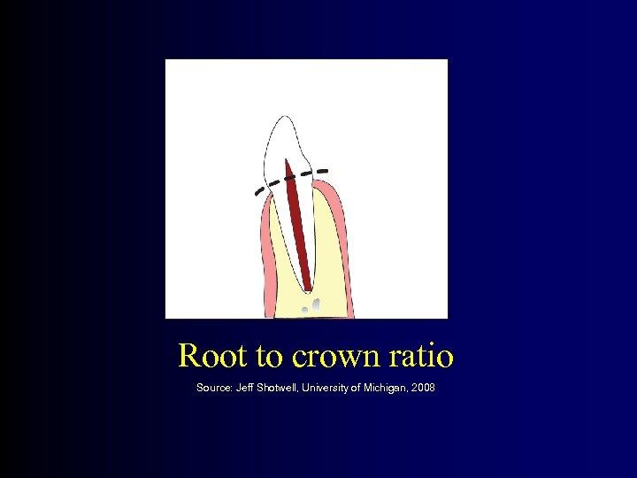 Root to crown ratio Source: Jeff Shotwell, University of Michigan, 2008