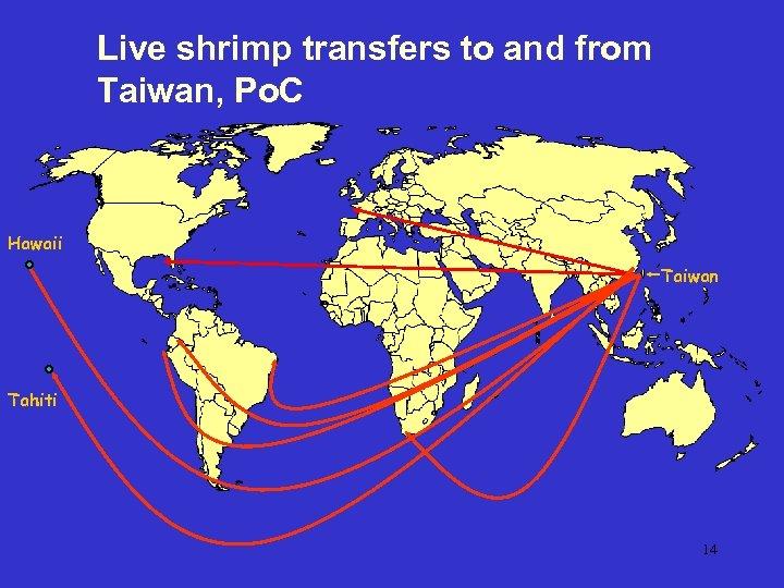 Live shrimp transfers to and from Taiwan, Po. C Hawaii Taiwan Tahiti 14