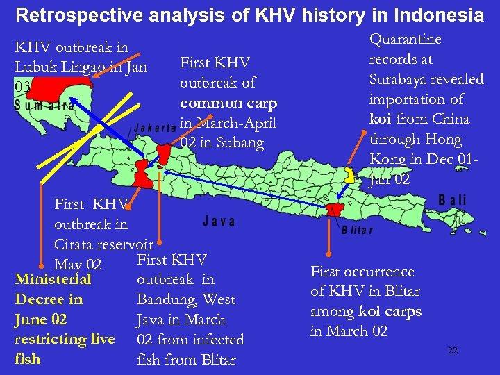 Retrospective analysis of KHV history in Indonesia KHV outbreak in Lubuk Lingao in Jan