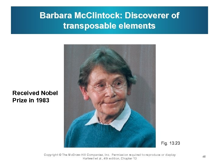Barbara Mc. Clintock: Discoverer of transposable elements Received Nobel Prize in 1983 Fig. 13.
