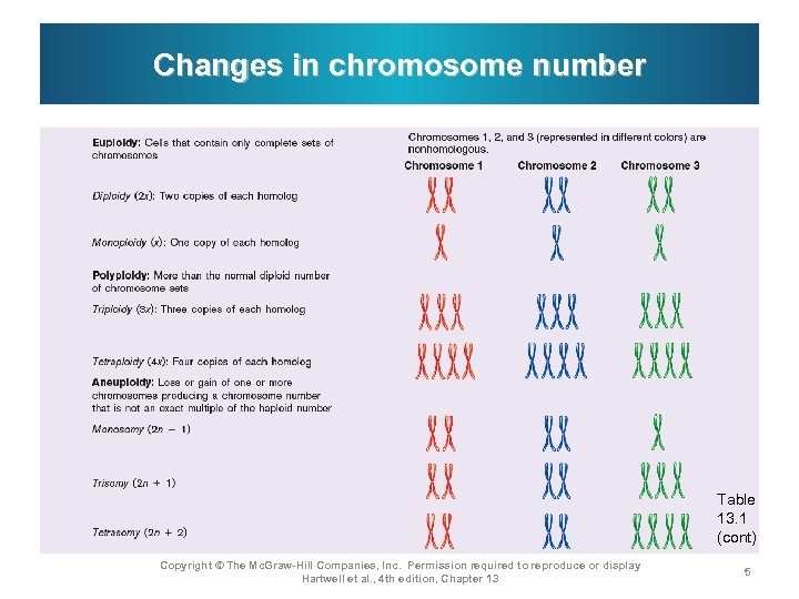Changes in chromosome number Table 13. 1 (cont) Copyright © The Mc. Graw-Hill Companies,