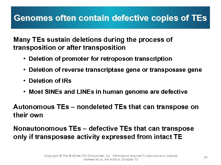 Genomes often contain defective copies of TEs Many TEs sustain deletions during the process